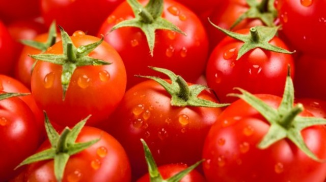 GMO hits grocery stores, was a tomatoe.