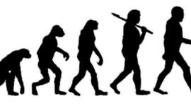 DARWIN'S BOPGRAPHY timeline