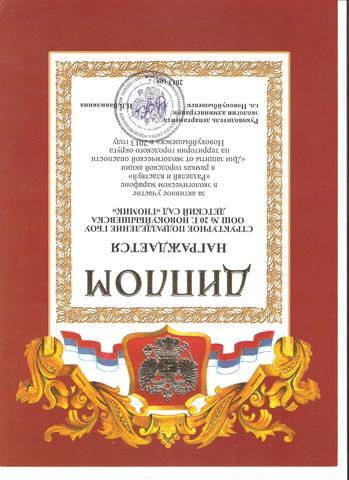 """Диплом за активное участие """"Разделяй и властвуй"""""""