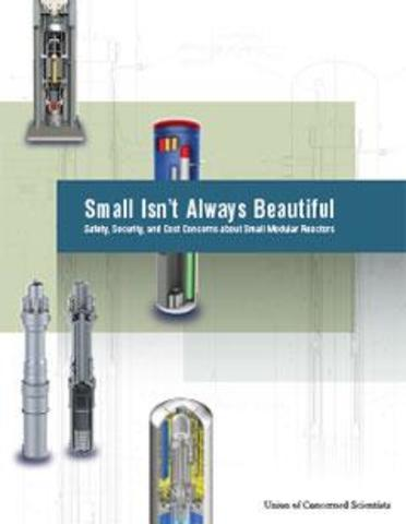 Small Modular Reactors: Safety, Security and Cost Concerns