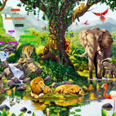 Linea de tiempo clasificación de ls seres vivos timeline