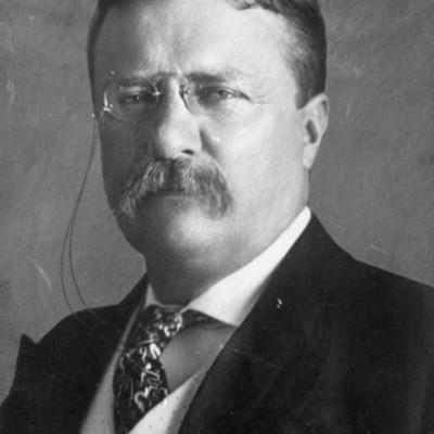 McKayla and Siya- Theodore Roosevelt timeline