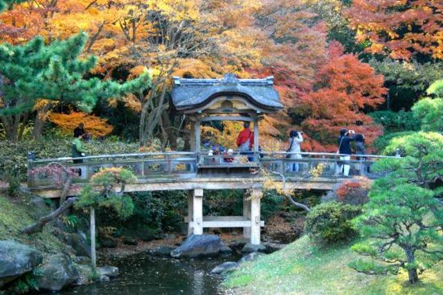 Sankei Garden Tea Ceremony