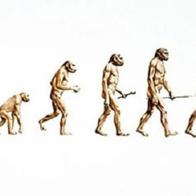 Evolutionary Theory Development timeline