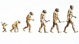 Evolutionary Theory Development timeline