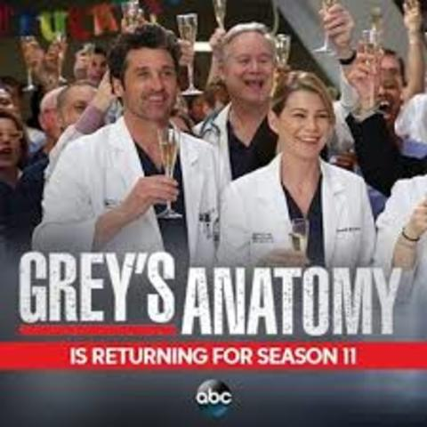 Season 11 Begins