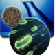 Newsmicrobiology