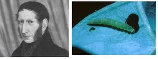 Agostino Bassi demuestra que una enfermedad del gusano de seda era producida por un hongo.