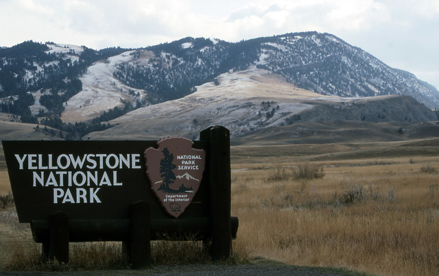Goes to Yellow Stone National Park
