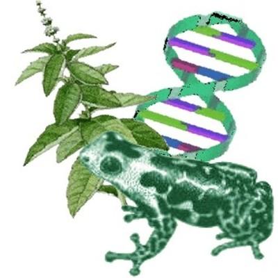 La Biologia timeline