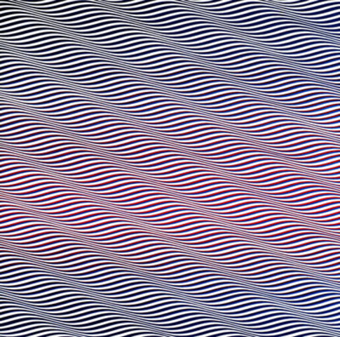 """Cataract""- Bridget Riley"