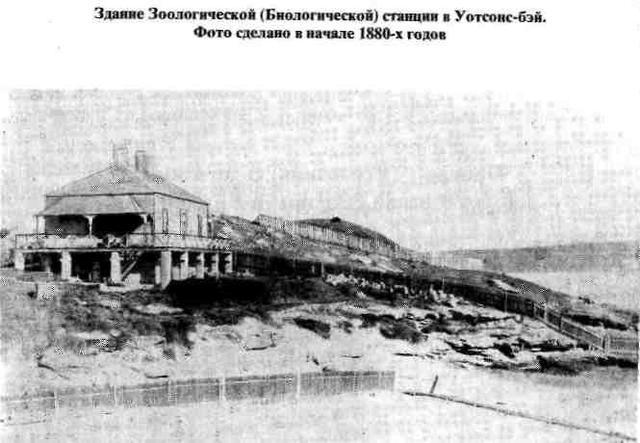 1881 год. «Проект развития Берега Маклая»