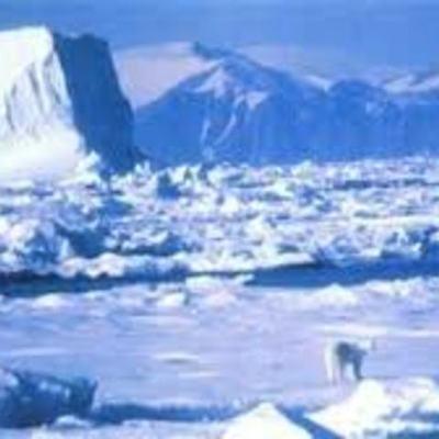 Исследователи Арктики timeline