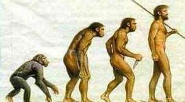 Eje cronológico de los homínidos timeline