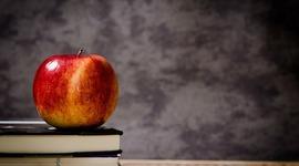 Historia de la Evaluación en Educación timeline