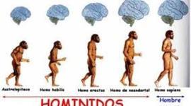 Hominidos timeline