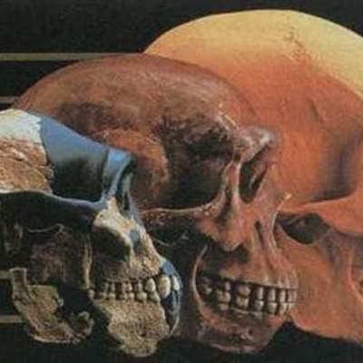 Eje cronológico: Evolución de los homínidos timeline