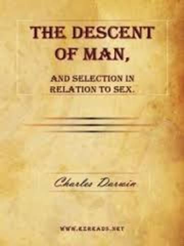 Darwin Publishes The Descent of Man, and Selection in Relation to Sex