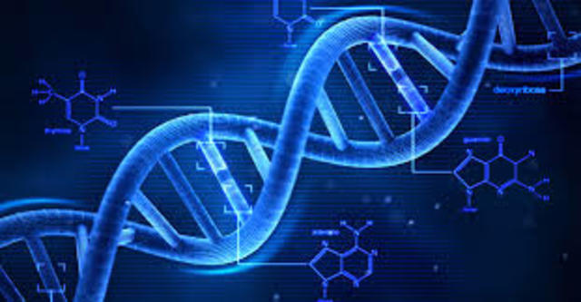 DNA Puzzle Solved