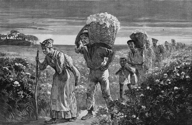 what were the jobs of slaves