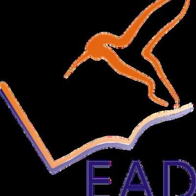Timeline: EAD no Brasil e no mundo