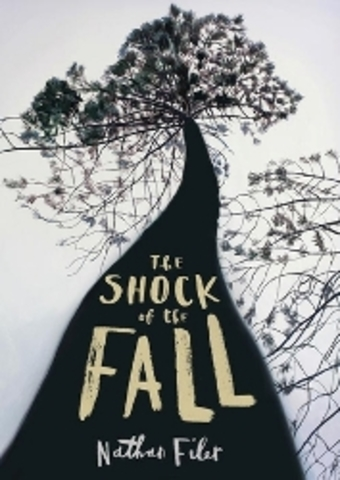 The Shock Of The Fall - by Nathan Filer (publish date & setting)