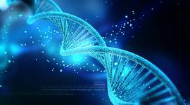 DNA timeline