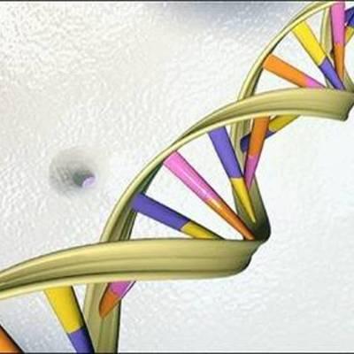 Descubrimientos del DNA timeline