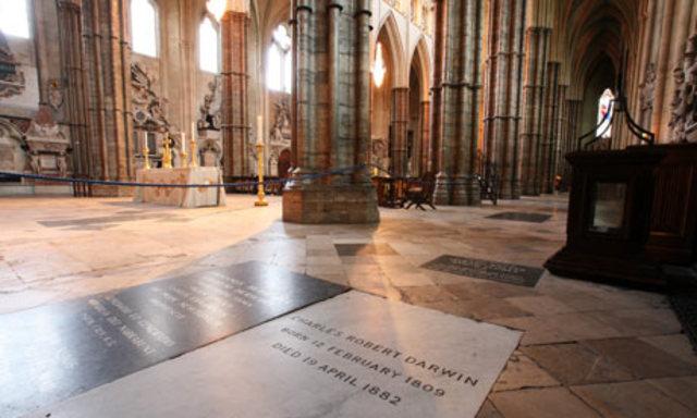 Los restos de Darwin se encuentran en la abadía de Westminster.