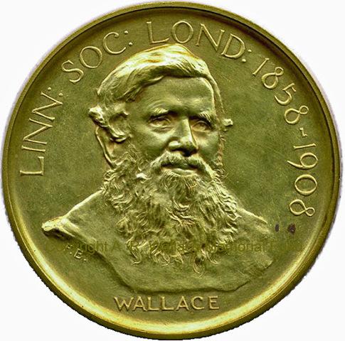 Wallace fue galardonado con la Royal Medal de la Royal Society, recibió el grado de doctor honoris causa.