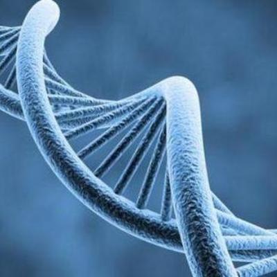 Acontecimientos del DNA timeline