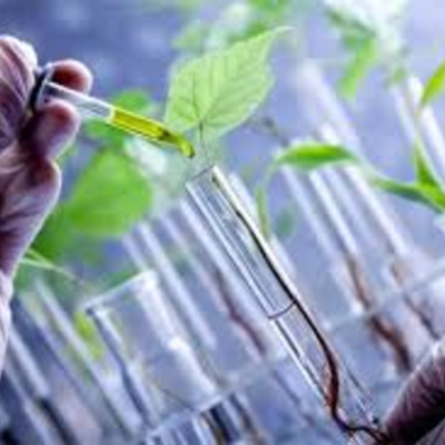 la biotecnologia timeline