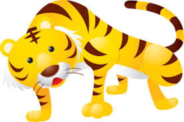 Elles ont regardé un tigre