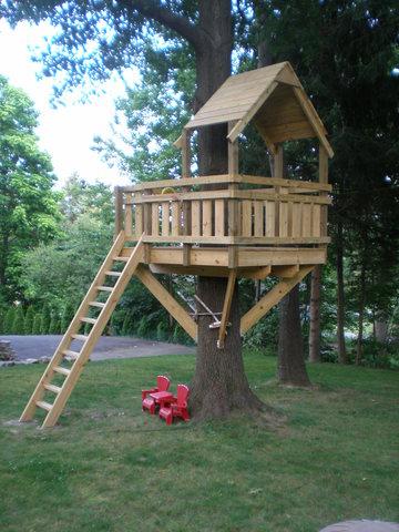 Yo hice una casa del árbol.