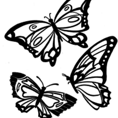 Time of the Butterflies Timeline