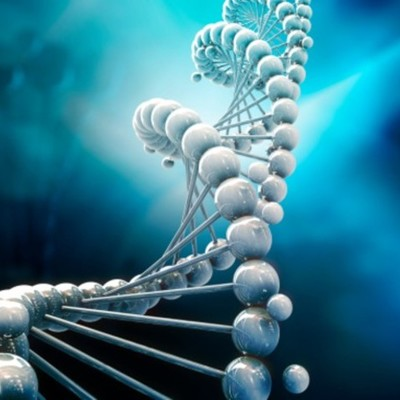 El Descubrimiento De La Estructura Humana timeline