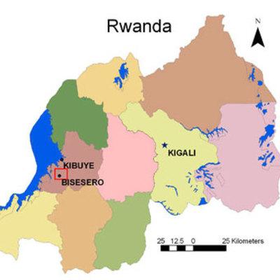 The Rwanda Genocide  timeline