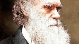 The Life of Darwin timeline