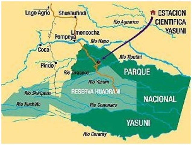 Reserva declarada zona intangible