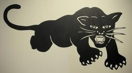 The Black Panther Party timeline