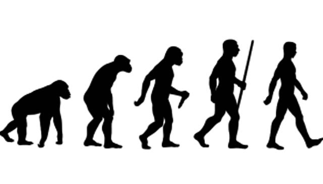 Primeras nociones de evolucion