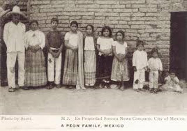 FAMILIA SIGLO XX