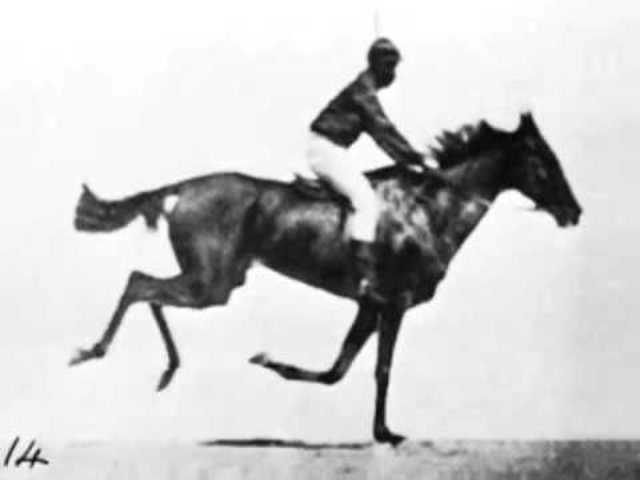 Séptimo momento: El caballo en movimiento.