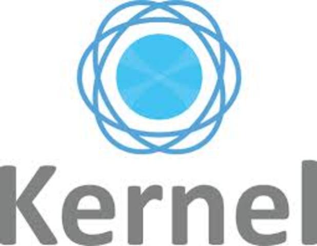 Se  retraso el proceso del nucleo KERNEL para completarce finalmente en el año 1991