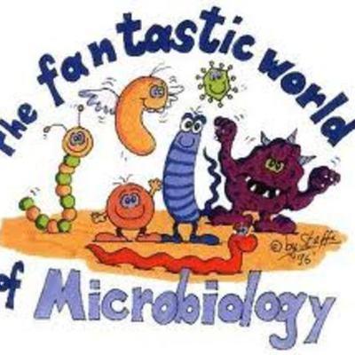 EVENTOS IMPORTANTES EN EL DESARROLLO DE LA MICROBIOLOGIA timeline