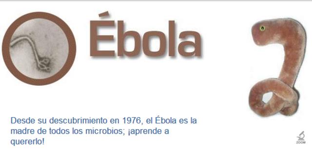 El descubrimiento del ébola