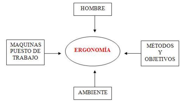 estudios profecionales de la ergonomia