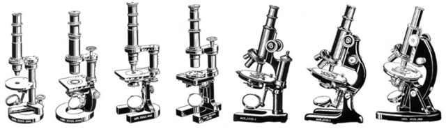 History Of The Microscope Timeline Timetoast Timelines