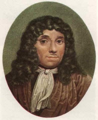 Anton Van Leeuwenhoek, Animáculos, Espermas