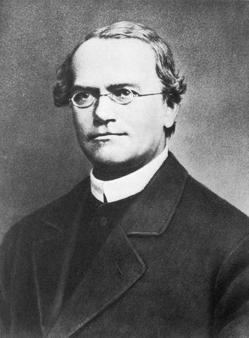Gregor Mendel, Padre de la Genética